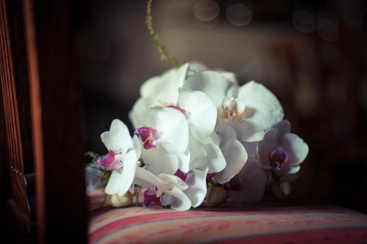 Romeo_Meagan_Nooitgedacht_Wedding-2